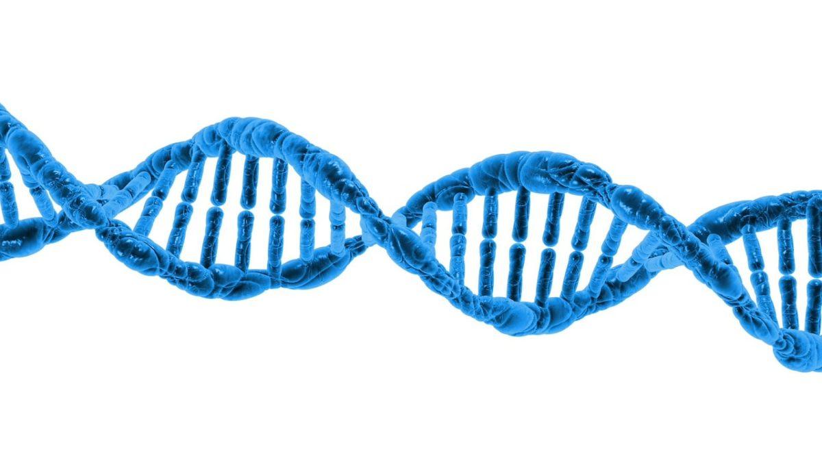 Proteinstruktur - Der Aufbau von Eiweiß